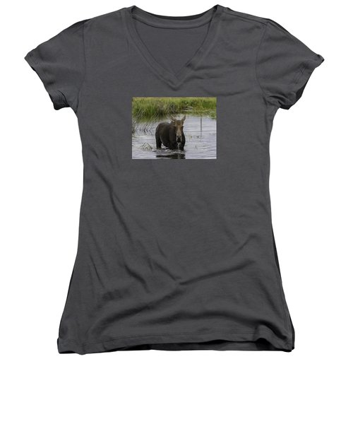 Drooling Cow Moose Women's V-Neck T-Shirt (Junior Cut) by Elizabeth Eldridge