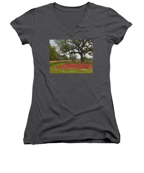 Drummonds Phlox Meadow Near Leming Texas Women's V-Neck