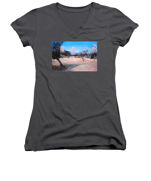 Dry Wash In Winter Women's V-Neck (Athletic Fit)