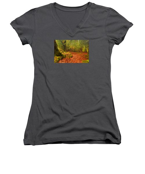 Dunstaffnage Castle Gardens Women's V-Neck T-Shirt