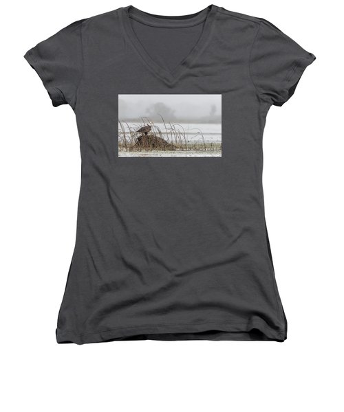 Eagle Hunts For Coots And Ducks Women's V-Neck (Athletic Fit)