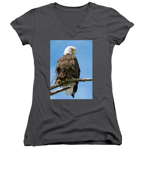 Eagle On Perch Women's V-Neck (Athletic Fit)