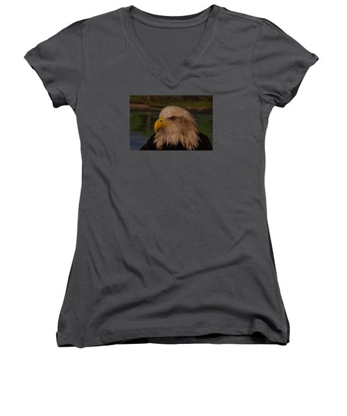 Women's V-Neck T-Shirt (Junior Cut) featuring the photograph Eagle  by Steven Clipperton