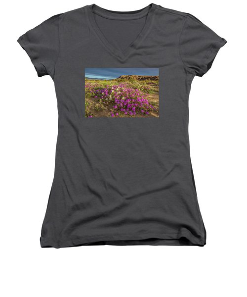 Women's V-Neck T-Shirt (Junior Cut) featuring the photograph Early Morning Light Super Bloom by Peter Tellone