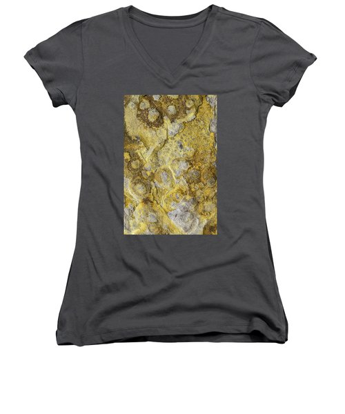 Earth Portrait 013 Women's V-Neck