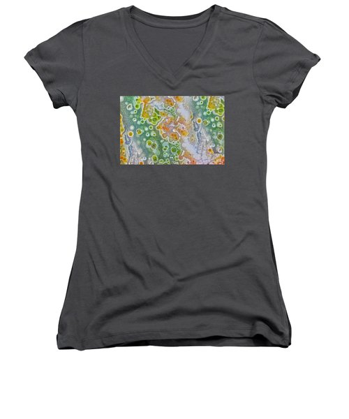 Earth Portrait 277 Women's V-Neck