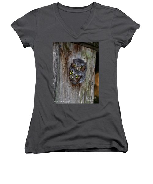 Eastern Screech Owl Chicks Women's V-Neck (Athletic Fit)