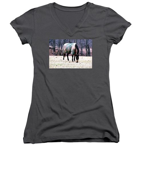 Eatin' Snowy Grass Women's V-Neck (Athletic Fit)