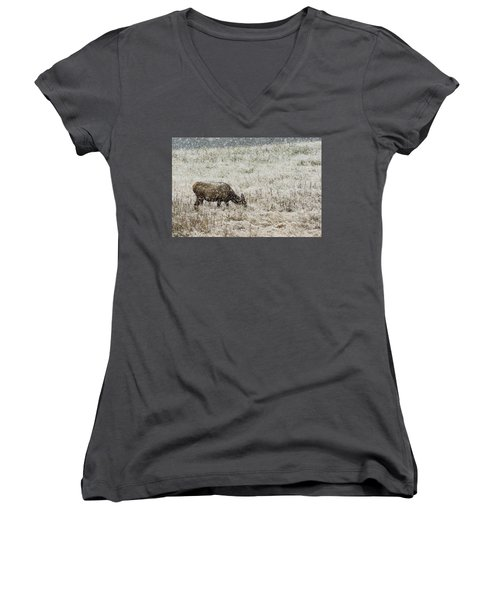 Eating Snow Maybe Women's V-Neck (Athletic Fit)
