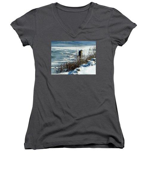Egret Frozen Lake Women's V-Neck