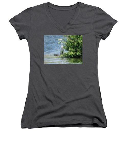 Great Egret In The Marsh Women's V-Neck