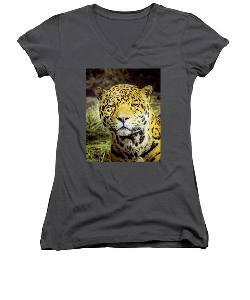 Women's V-Neck T-Shirt (Junior Cut) featuring the photograph El Santo by Janis Knight
