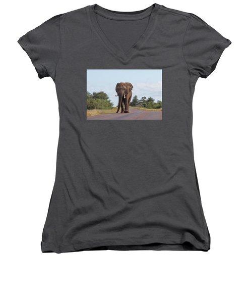 Elephant In Kruger Women's V-Neck (Athletic Fit)
