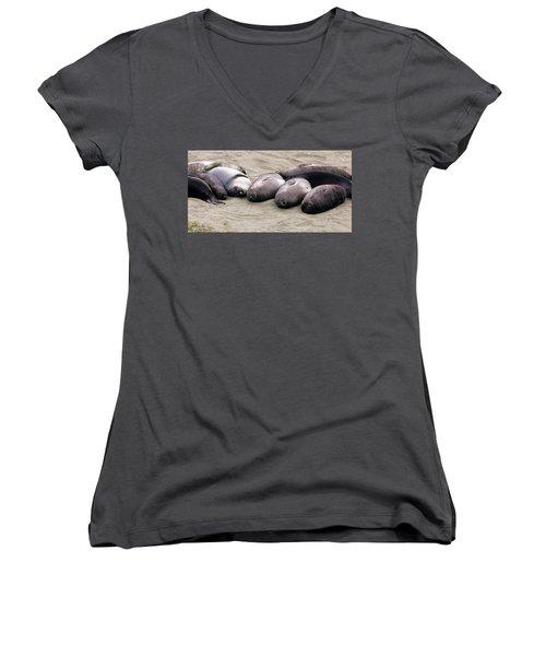 Elephant Seals Women's V-Neck