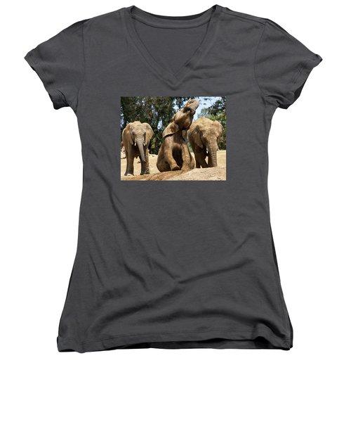 Elephants Women's V-Neck