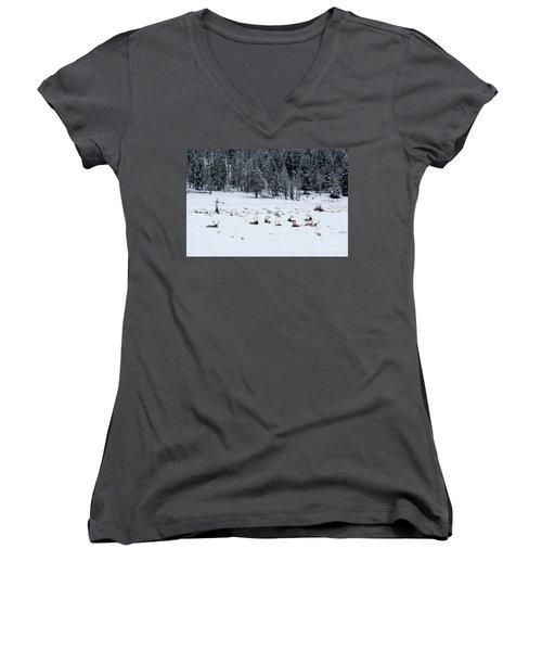 Elk - 9134 Women's V-Neck T-Shirt