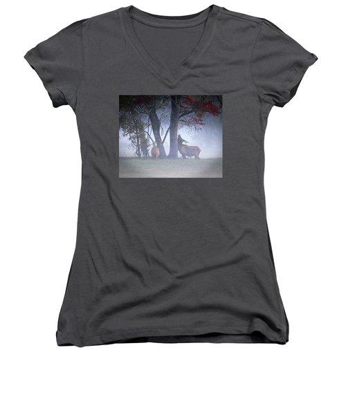 Elk Neck Scratch Women's V-Neck T-Shirt (Junior Cut) by Lamarre Labadie