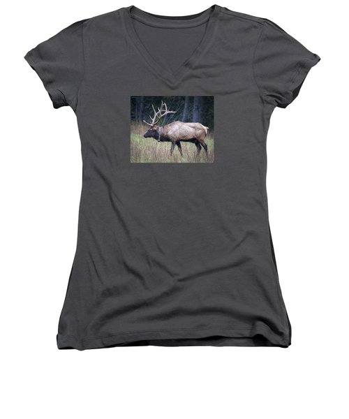Women's V-Neck T-Shirt (Junior Cut) featuring the photograph Elk by Tyson and Kathy Smith