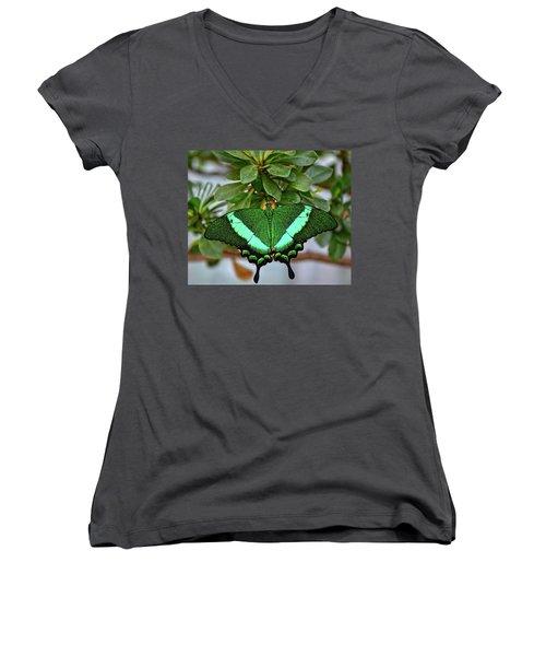 Emerald Swallowtail Butterfly Women's V-Neck T-Shirt (Junior Cut) by Ronda Ryan