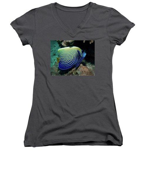 Emperor Angelfish, Red Sea 1 Women's V-Neck