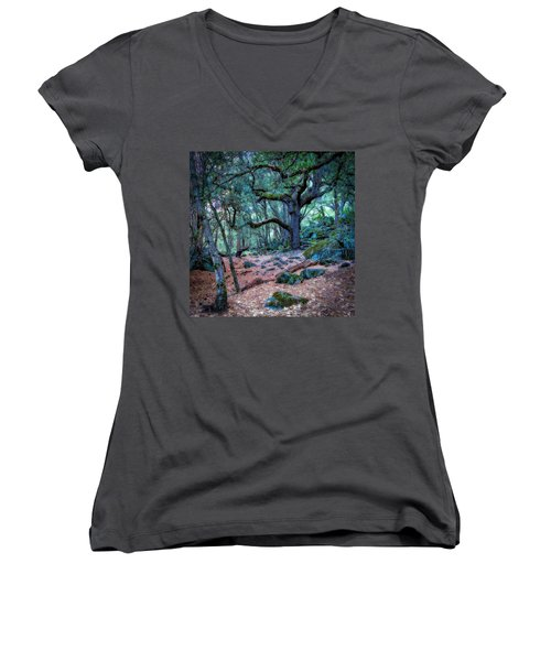 Enchanted Women's V-Neck T-Shirt