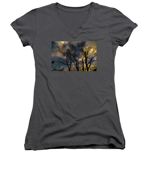 Women's V-Neck T-Shirt (Junior Cut) featuring the photograph Enchanting Night by James BO Insogna