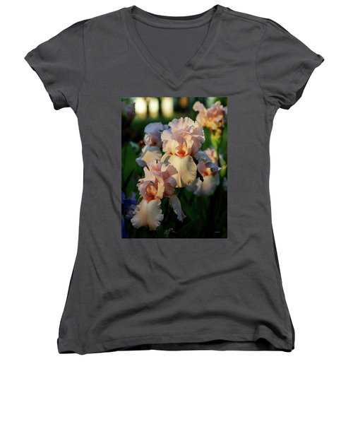 End Of Day Pink Irises 6702 H_2 Women's V-Neck (Athletic Fit)