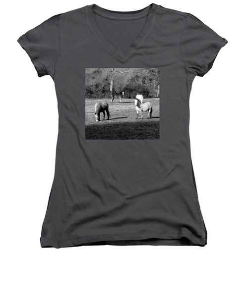 English Horses Women's V-Neck