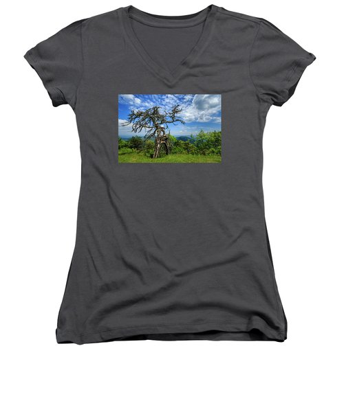 Ent At The Top Of The Hill - Color Women's V-Neck T-Shirt (Junior Cut) by Joni Eskridge