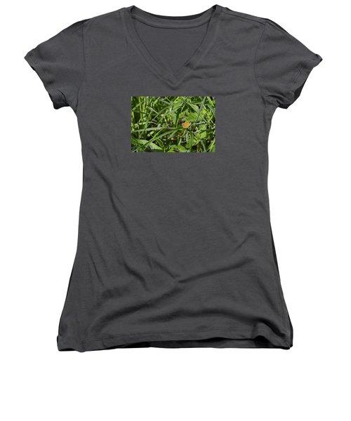 Women's V-Neck T-Shirt (Junior Cut) featuring the photograph Essex Skipper 2 by Leif Sohlman