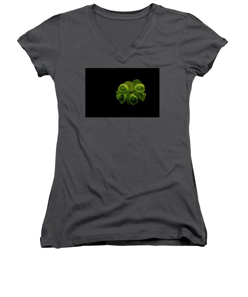 Euphorbia Women's V-Neck (Athletic Fit)