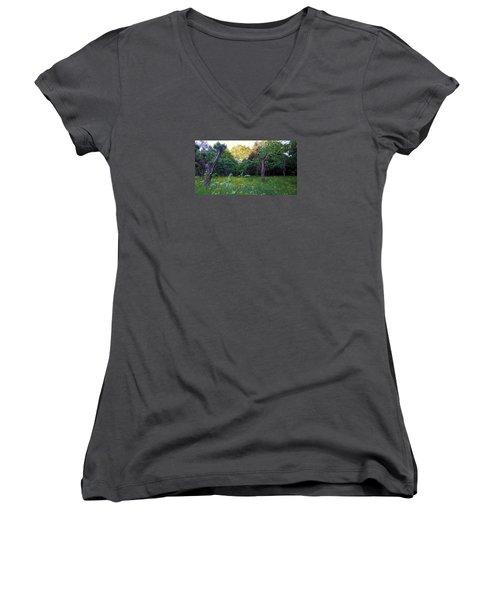 Women's V-Neck T-Shirt featuring the photograph Evening Light by Anne Kotan