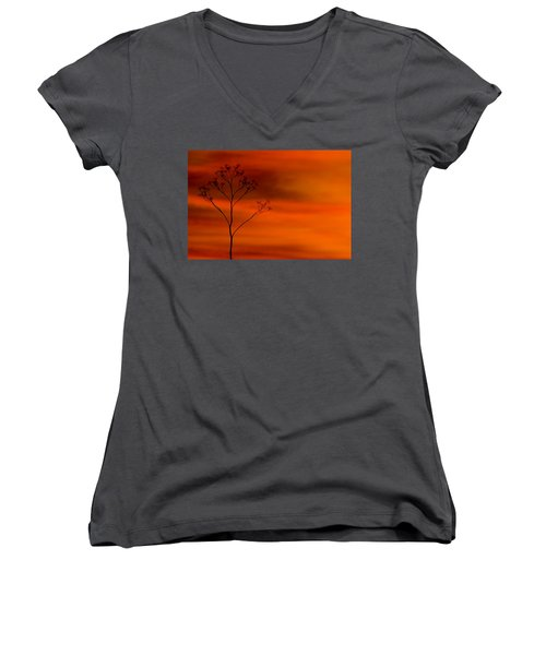 Evening Light  Women's V-Neck