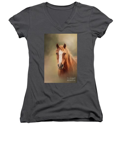 Everyone's Favourite Pony Women's V-Neck (Athletic Fit)