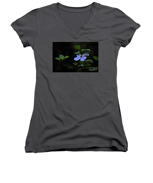 Women's V-Neck T-Shirt (Junior Cut) featuring the photograph Exquisite Light by Skip Willits
