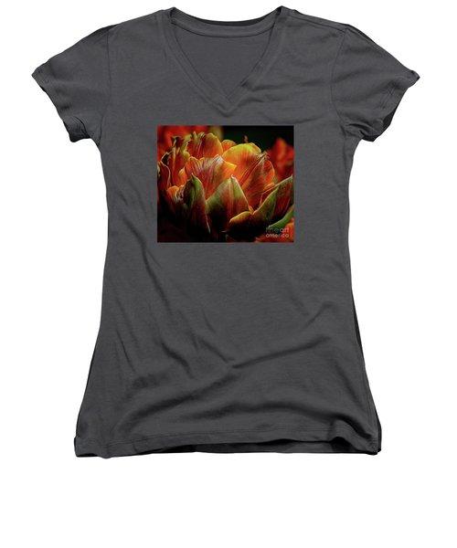Extraordinary Passion Women's V-Neck T-Shirt (Junior Cut) by Diana Mary Sharpton