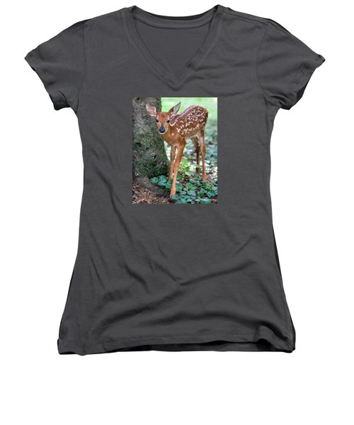 Eye To Eye With A Wide - Eyed Fawn Women's V-Neck T-Shirt