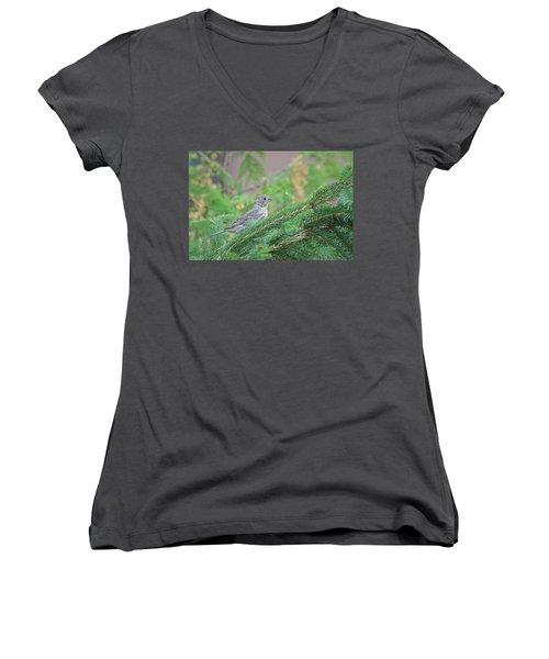 Eyes Up... Women's V-Neck T-Shirt