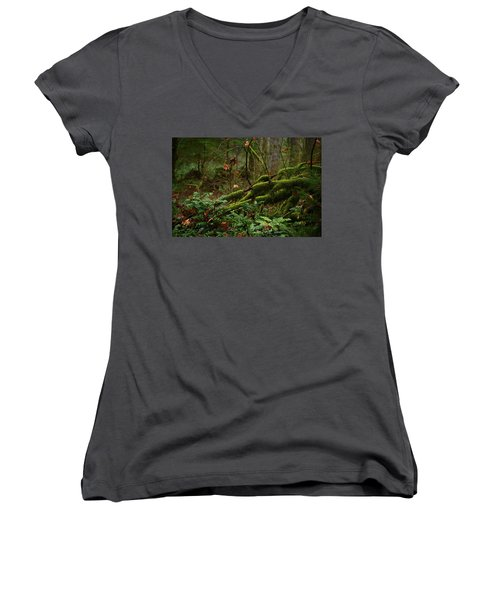 Fairy Forest Women's V-Neck T-Shirt