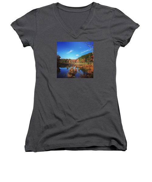 Fall At The Pond Women's V-Neck T-Shirt (Junior Cut) by Jason Nicholas