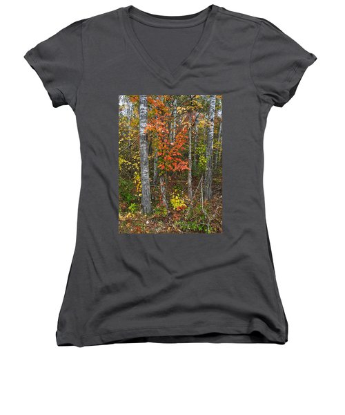 Fall Color At Gladwin 4543 Women's V-Neck T-Shirt