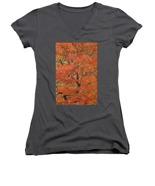 Fall Color Women's V-Neck T-Shirt