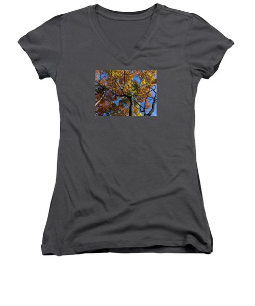 Women's V-Neck T-Shirt (Junior Cut) featuring the photograph Fall Colorful Trees by Haleh Mahbod