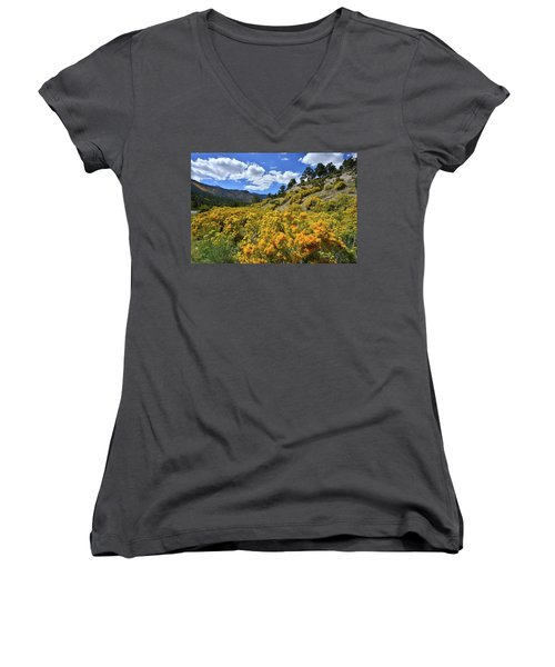 Fall Colors Come To Mt. Charleston Women's V-Neck
