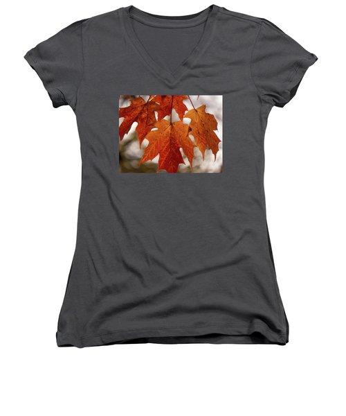 Fall Foliage Women's V-Neck T-Shirt (Junior Cut) by Kimberly Mackowski