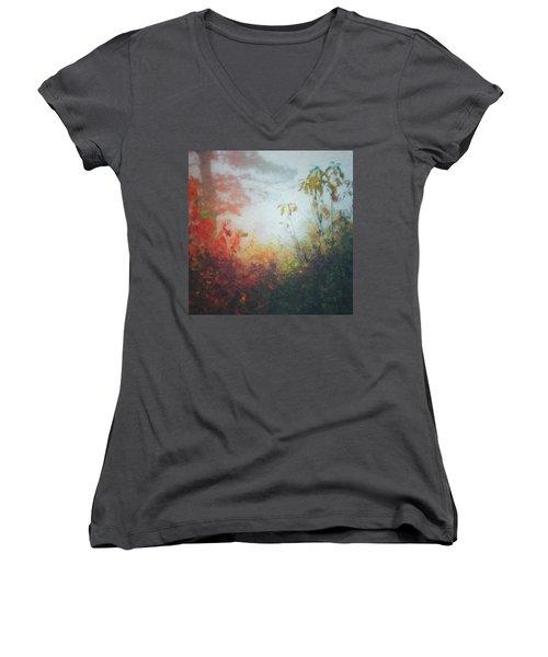 Fall Magic Women's V-Neck T-Shirt