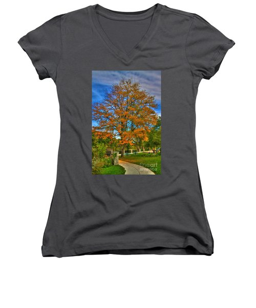 Fall On The Walk Women's V-Neck T-Shirt (Junior Cut) by Robert Pearson