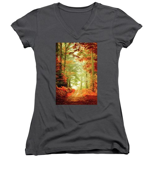 Fall Painting Women's V-Neck T-Shirt