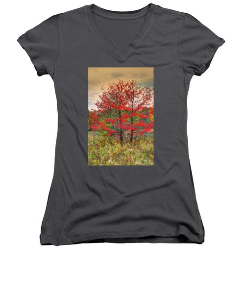 Fall Painting Women's V-Neck T-Shirt (Junior Cut) by Skip Tribby