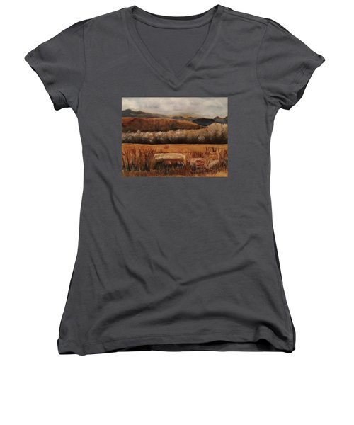 Fall Plains Women's V-Neck T-Shirt (Junior Cut) by Sharon Schultz